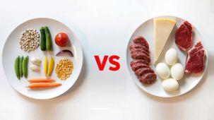vegetariani-vs-carnivori.jpg