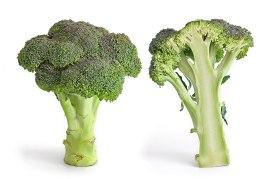 Broccolo a testa